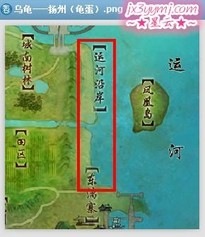 乌龟——扬州(龟蛋).jpg