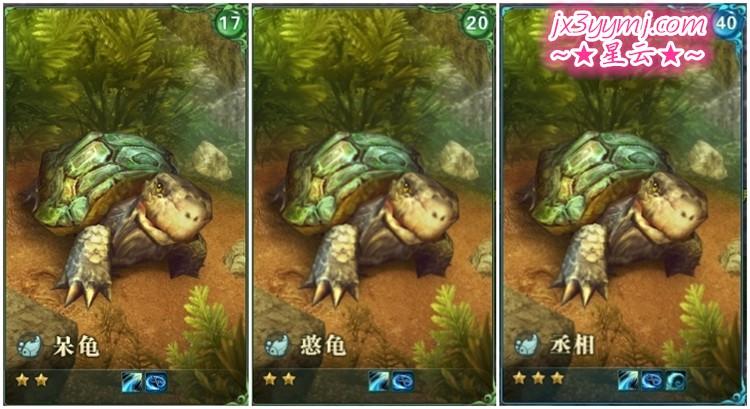 龟整合.jpg